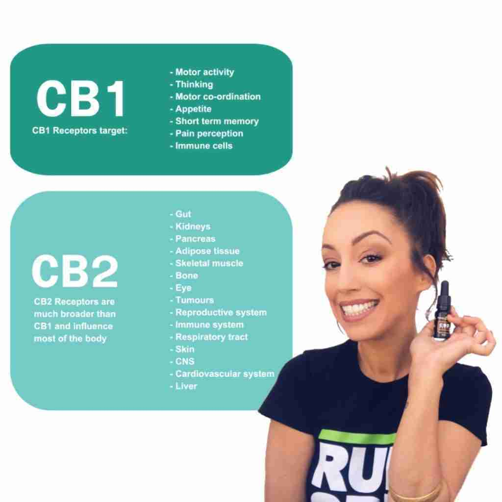 CBD cb1 and cb2