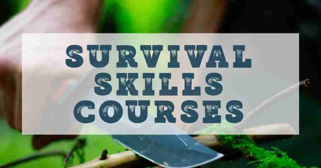 Survival skills courses online
