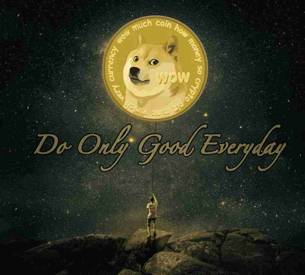 do only good everyday doge